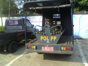 polisirimm3